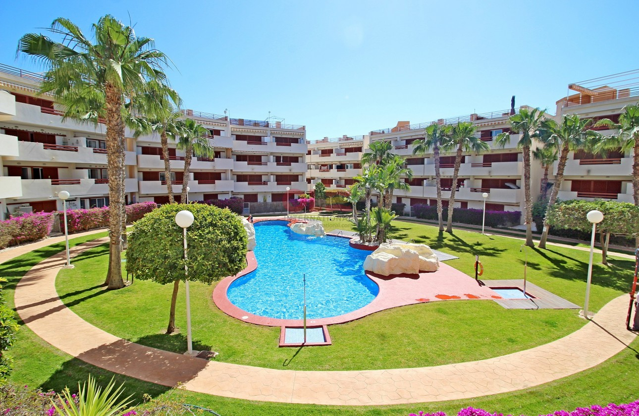 Apartment - Re-sales - Playa Flamenca - Playa Flamenca